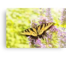 Butterfly - Swallowtail - Hard to swallow Canvas Print