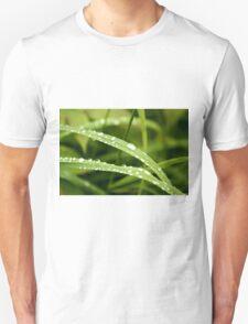 Raindrops on Dune Grass Unisex T-Shirt