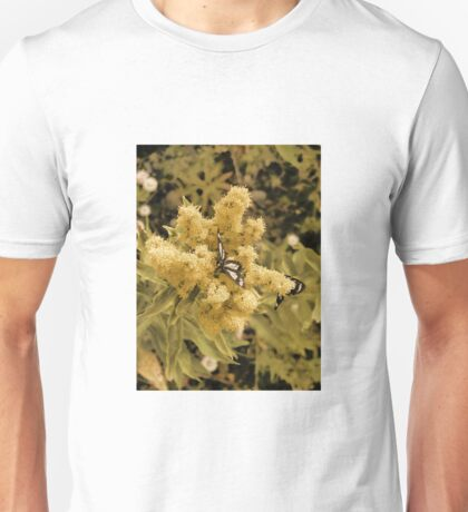 Butterflies And Butterfly Weed Unisex T-Shirt