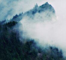 Mountain Mist Sticker