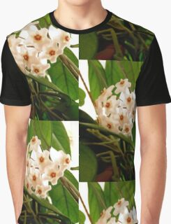 Hoya flowers Graphic T-Shirt