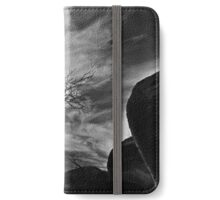The Rocks and the Tree... iPhone Wallet/Case/Skin