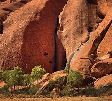 Carved in Stone - Uluru  by Hans Kawitzki