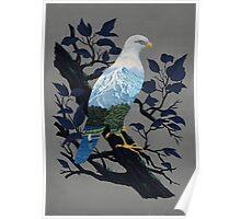 Eaglescape Poster