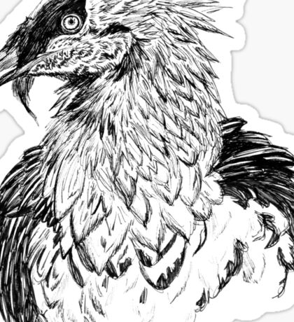 Bearded Vulture Portrait (B+W) Sticker