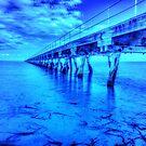 The Longest Wood Pier   by Mark Bilham