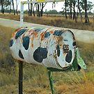 Rusty Cow Print Box  by Penny Smith