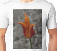 A Flamboyant Flame Tulip in a Pebble Garden Unisex T-Shirt