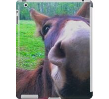 Mama Ruth iPad Case/Skin