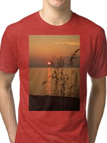 Glowing Grass Tri-blend T-Shirt