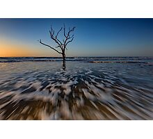 Dawn on Edisto Island Photographic Print