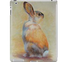 Casper iPad Case/Skin