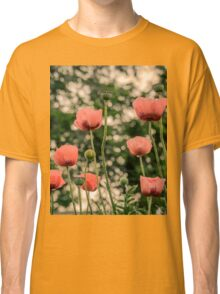 Pink Poppy in late everning light Classic T-Shirt