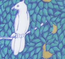 Partridge in a Pear Tree Sticker