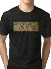 Chickadee and Reds Tri-blend T-Shirt