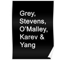 Greys Anatomy Original Character Surnames Poster