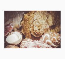 Seashell Background Macro 2 Kids Tee
