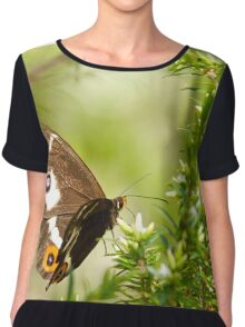 Varied Sword Grass Brown Butterfly Chiffon Top
