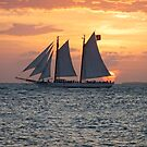 Five Sails and a Sunset by Ludwig Wagner