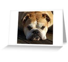 bulldog your best friend Greeting Card