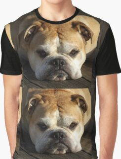 bulldog your best friend Graphic T-Shirt