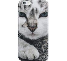 Momma Cat iPhone Case/Skin