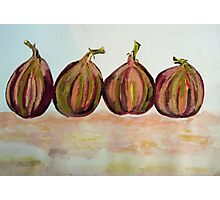 Figs in a Row Photographic Print