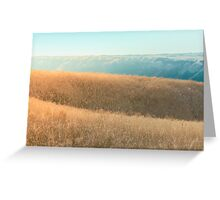 Highland in Autumn Greeting Card