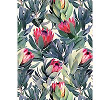Painted Protea Pattern Photographic Print