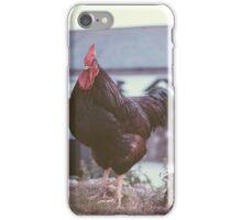 Cockerel iPhone Case/Skin