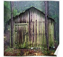 Hiding shed Poster