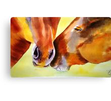 Gentle giants 2 Canvas Print