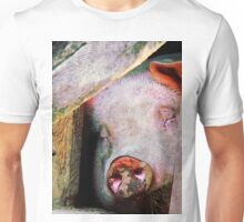 Pig Sleeping Unisex T-Shirt