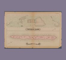 Map of Central Park and Blackswell Island 1879 Kids Tee