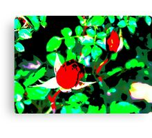 red rose painting Canvas Print