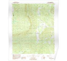 USGS TOPO Map Alabama AL Bulls Gap 303370 1987 24000 Poster