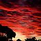 *Avatar/Red Skies - Nature In Its Entirety (Nothing Man Made)