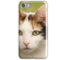 Waiting At The Gate iPhone Case/Skin