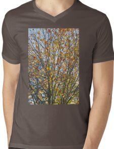 Colours of Autumn Mens V-Neck T-Shirt