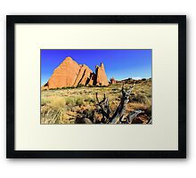 Arches National Park Framed Print