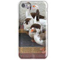 Geese on a Sidewalk iPhone Case/Skin