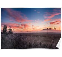 Beautiful sunrise Poster