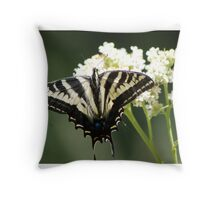 Should be Pale Swallowtail Throw Pillow