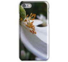 Petals Lost iPhone Case/Skin