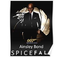 Ainsley Spicy Poster