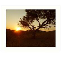 Sand Dune Sunset Art Print