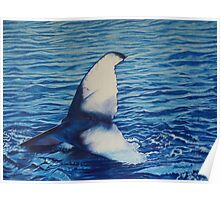 Whales Tail Love Poster