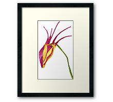 Aquilegia-watercolor flower for elves Framed Print