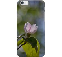 Quince flower iPhone Case/Skin