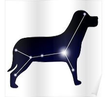 Canis Major Poster